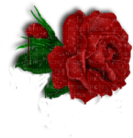 RED ROSES DECO rose rouge