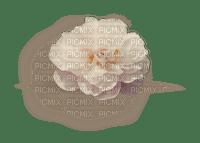 flower fleur beige