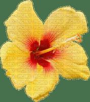 Kaz_Creations Colours Deco Flower