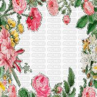 spring flower frame printemps cadre fleur