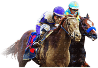 race horses bp