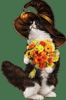 Kaz_Creations Cats Cat Kittens Kitten  Halloween