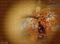 minou-autumn background-sfondo-autunno-fond d'automne-bakgrund höst