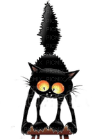 chat noir cat black  halloween