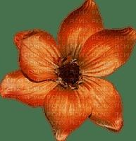 Fleur.Orange.Flower.Deco.Victoriabea