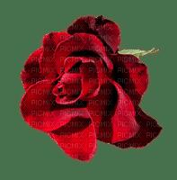 dulce rosas