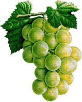 grapes white raisin blanc
