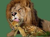 lion et faon