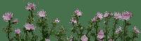 Fleurs.Flowers.pink.garden.Victoriabea