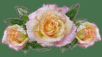 fleur, flower, kukka, ruusu, rose