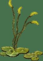 Kaz_Creations Deco Flowers Garden  Colours