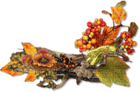 automne deco autumn border