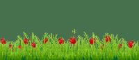 Kaz_Creations Deco Flowers Flower Colours Grass