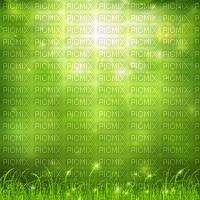 green nature sunlight