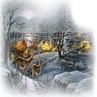 winter forest- hiver forêt