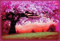 landscape, spring