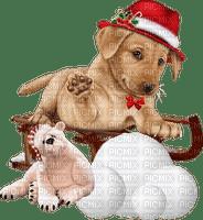 Christmas. Dog. Winter. Leila
