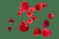 Kaz_Creations  Valentine Love Deco Flower Petals