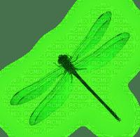 Dragonfly.Green