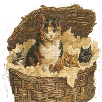 chat vintage panier cats vintage basket