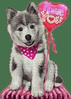 Tournesol94 chien