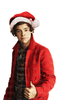 Kaz_Creations Harry Styles One Direction Singer Band Music  Christmas