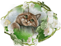 chat muguet cat lily of the valley