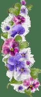 blommor - lila