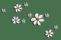 Flowers Brown