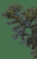 tree baum bush busch