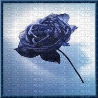 image encre texture fleur anniversaire rose edited by me