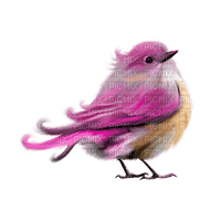 Kaz_Creations Birds Bird Colours Pink