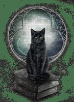 cat black window goth halloween --chat noir