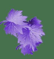 autumn purple leaves automne violet feuilles 🍁