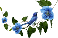 blue branch flowers bleu branche fleur