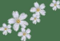 Fleurs blanches.Deco.Flowers.Victoriabea
