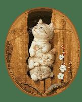 CATS TREE HOLE chat trou d´arbre