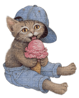 cats bp