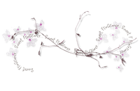 Deco.Barre.Spring.Flowers.Fleurs.Branche.branch.Printemps.Victoriabea