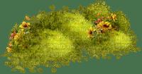 Grass.herbe.Fleur.Flowers.Plants.Garden.Victoriabea