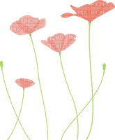 4 Coquelicots rouges fleurs nature Debutante