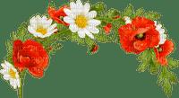 blommor-flowers