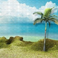 beach plage strand island insel  sea mer meer ocean water eau   summer ete paysage landscape fond background palm palme