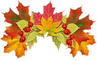 FALL LEAVES CROWN  AUTOMNE COURONNE FEUILLES