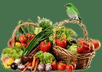 panier légumes-fruits-oiseau-bird-vegetable