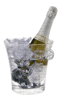 Champagne.Ice.Eis.Hielo.Victoriabea
