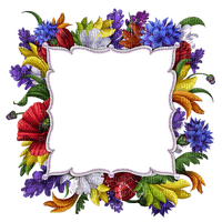 flower frame cadre fleur