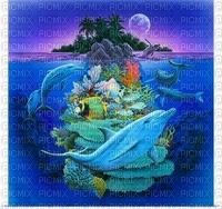 dolphins bp