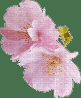 spring printemps frühling primavera весна wiosna flower fleur blossom bloom blüte fleurs blumen